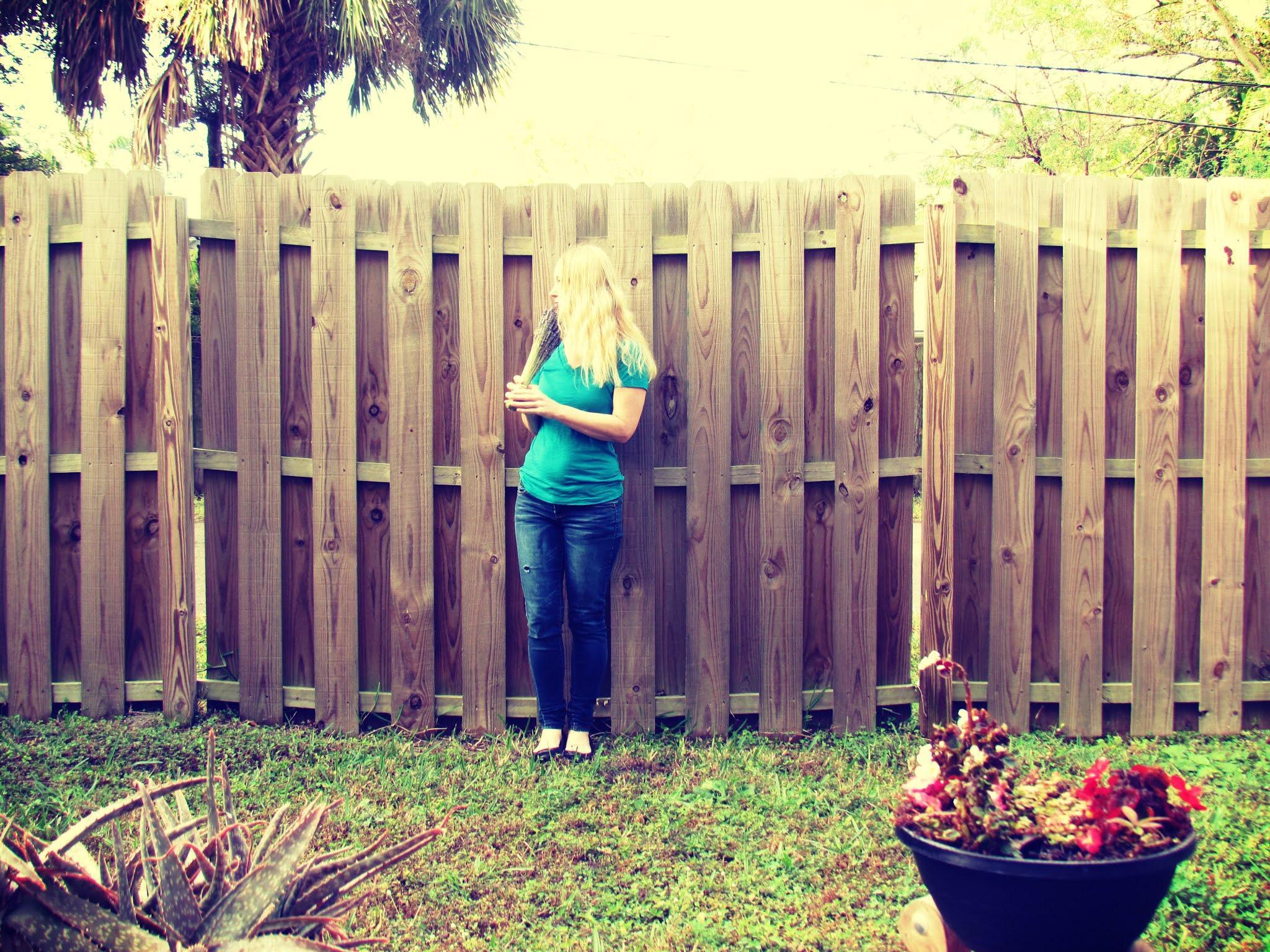 Green Backyard Oasis With Wooden Fence Ozona, Florida + Florida living, Small-town Florida