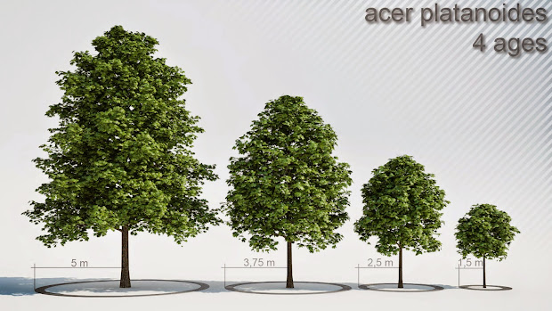 Download Free 3d Trees - Year of Clean Water
