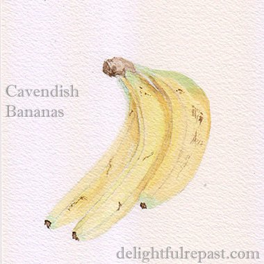 Banana Nut Cookies (this is my watercolor painting of the bananas) / www.delightfulrepast.com