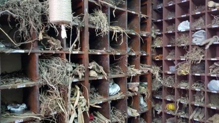 herboristerie thrissur