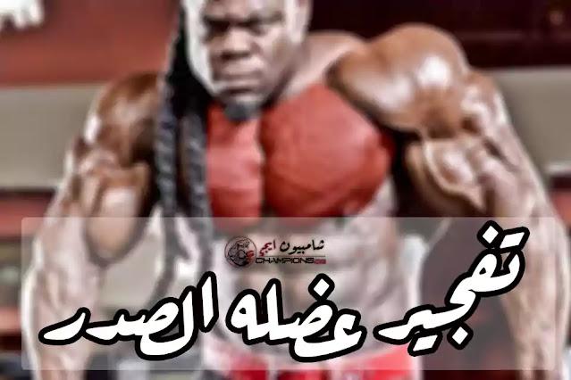 أقوي تمارين لتفجير عضله الصدر وتضخمها بشكل جنوني -Strongest chest exercises