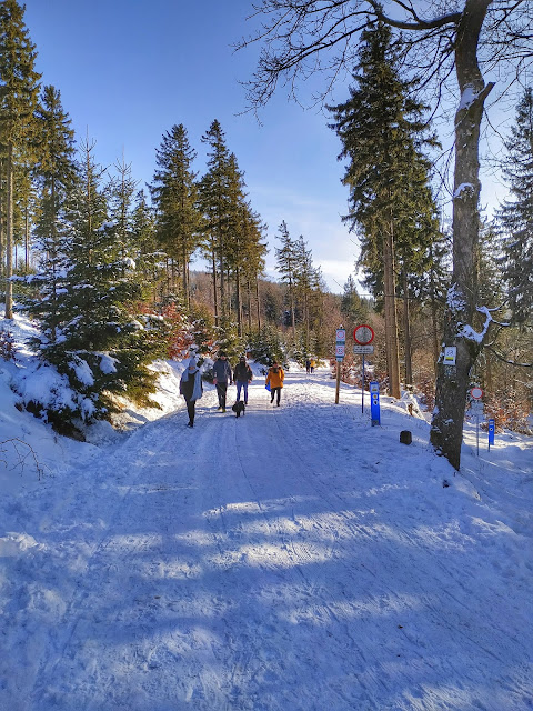 przełęcz Jugowska, Wielka Sowa zimą, spacer okolice Wrocławia