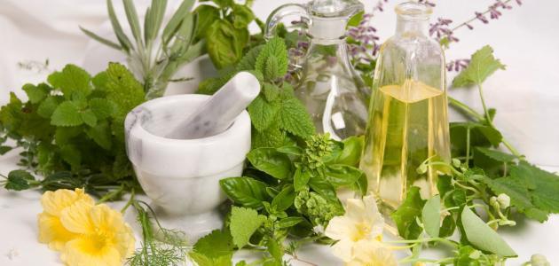 مفهوم الأعشاب الطبية