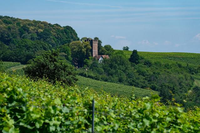 Grenzlandtour Schweigen-Rechtenbach   Bad Bergzaberner Land   Wandern Südliche Weinstraße 20