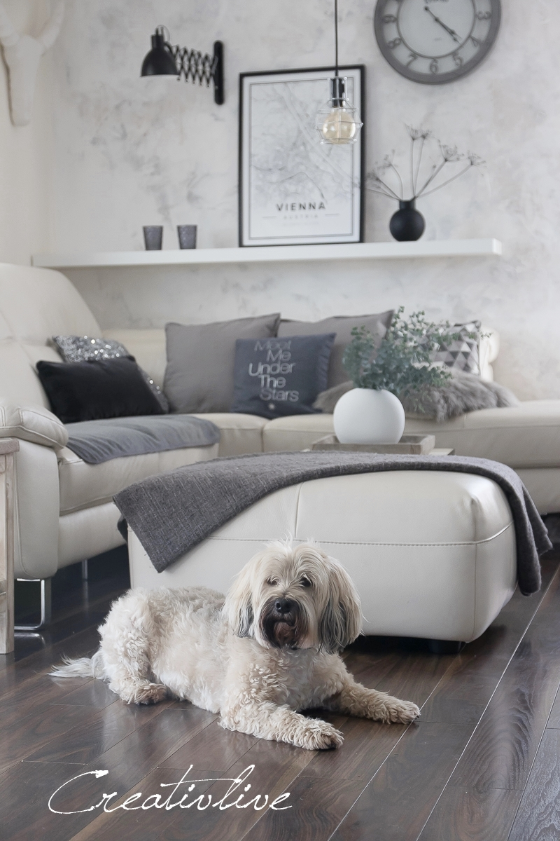 otto shopping festival oder was macht der hund auf dem sofa creativlive. Black Bedroom Furniture Sets. Home Design Ideas