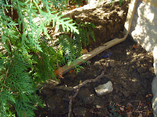 Watertite Downspout disconnection Toornto Scarborough