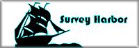 Платный опрос Survey Haebor - Вывод 300 рублей на Qiwi кошелек или мобильник