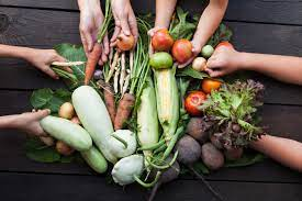 Canada can become a food exporter environmentally friendly and sustainable food