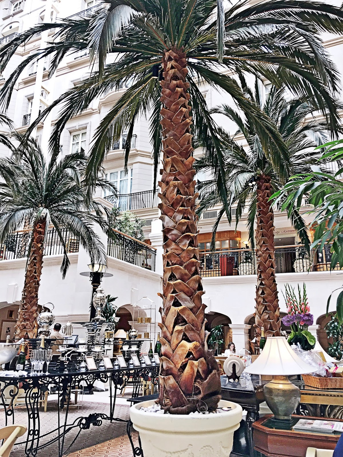 city chic lifestyle afternoon tea at the winter garden in