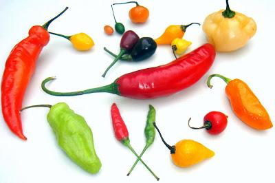Pimentas (Imagem: Reprodução/Internet)