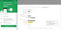 скрины получения денег в МММ-2021 прусы