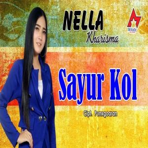 Download Lagu Dangdut Koplo Terbaru Nella Kharisma - Sayur Kol