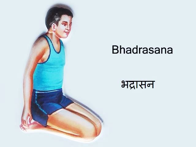 Bhadrasana: Bhadrasana in Hindi