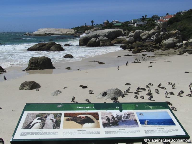 Motorhome Africa do Sul