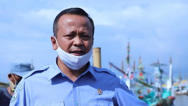 Edhy prabowo politikus Gerindra ditangkap KPK dini Hari