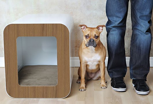 Kooldog House, A Contemporary and Stylish Indoor Home and Crate For Your  Contemporary and Stylish Dog. - if it's hip, it's here