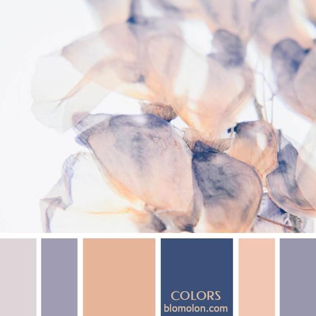 variedad_en_color_paletas_de_colores_77