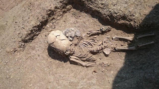 Remains of child with 'modified' skull found in Crimea