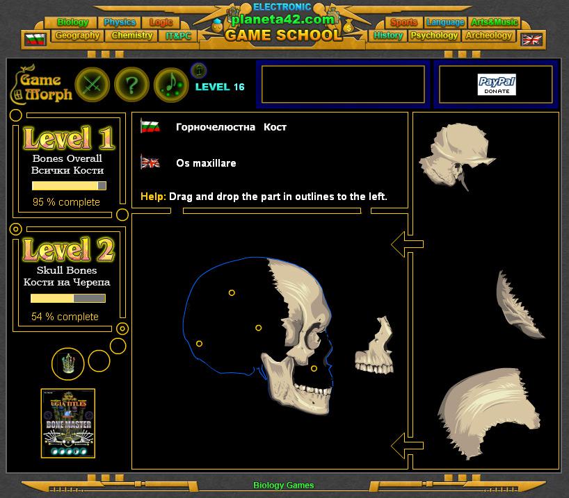 Bones Puzzle Screenshot