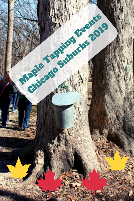 Maple Tapping Events in  Chicago Suburbs 2019