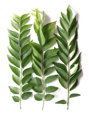 Curry Leaves or Kadi Patta