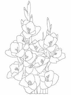 gladiolus flower coloring pages for adults