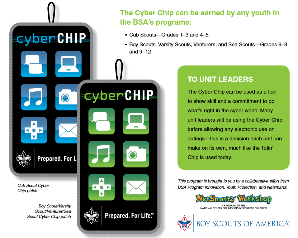picture relating to Bsa Cyber Chip Green Card Printable titled Mices Cubbing Designs