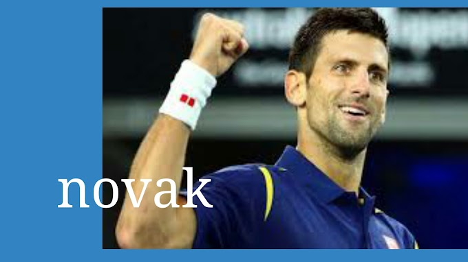 Novak Djokovic vows to win fans love with Ferrer record in view