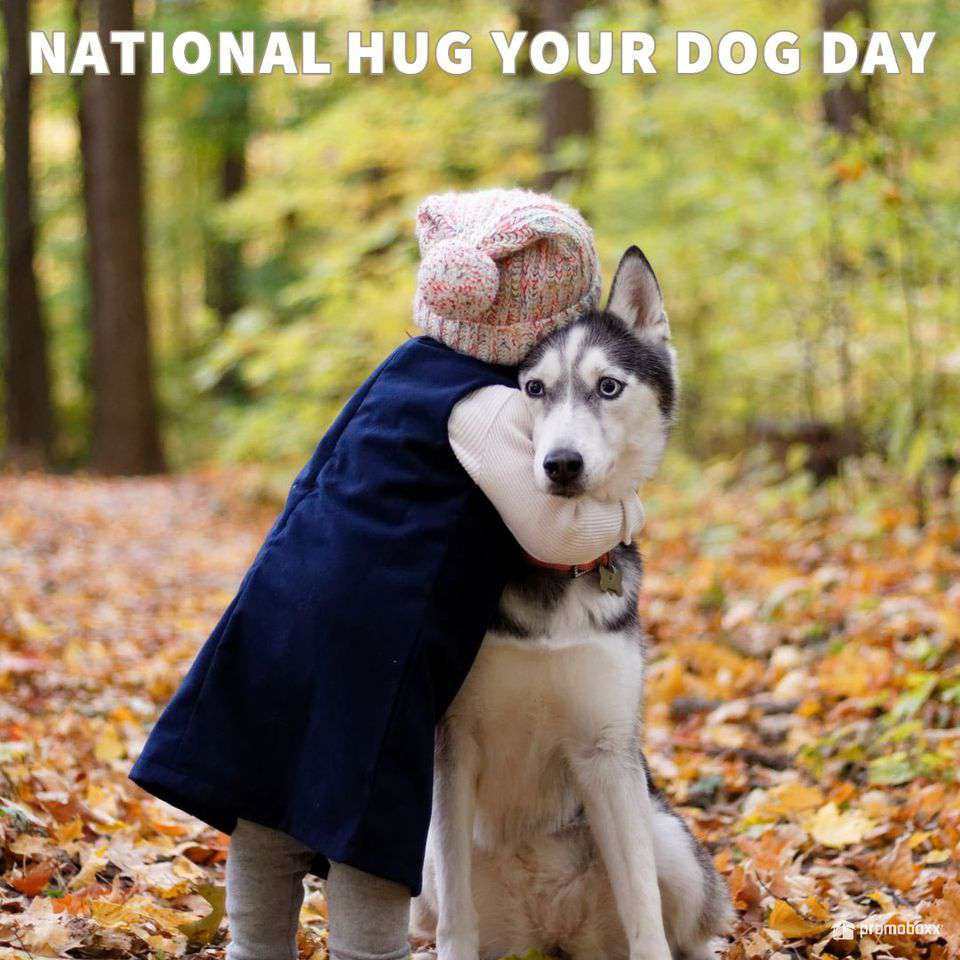 National Hug Your Dog Day Wishes Images
