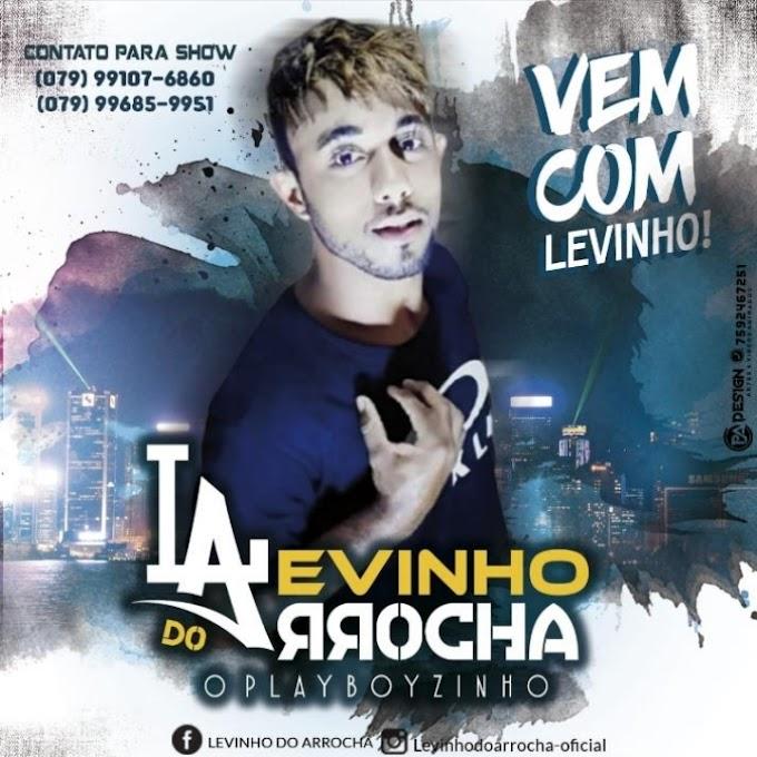 LEVINHO DO ARROCHA - O PLAYBOYZINHO CD 2020