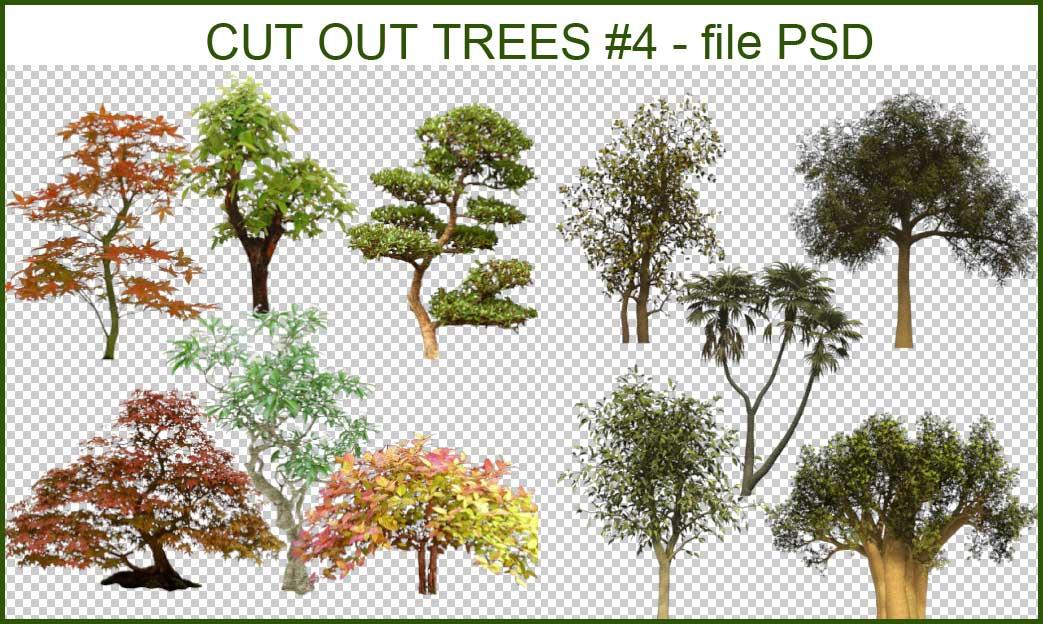 Vray Proxy Trees Free Download - stafffl