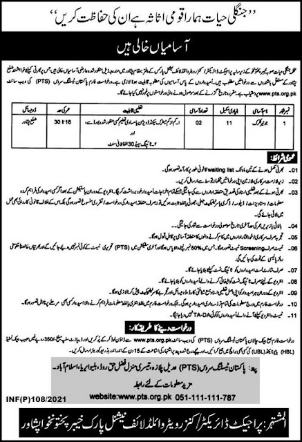 forest-department-kpk-jobs-2021-download-pts-application-form