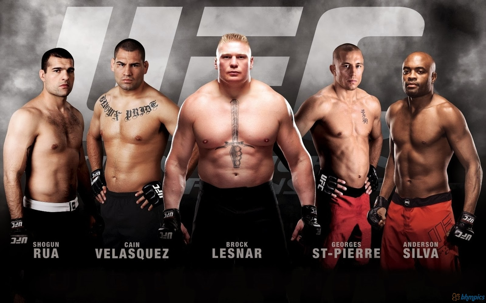 Ufc the ultimate fighting championships