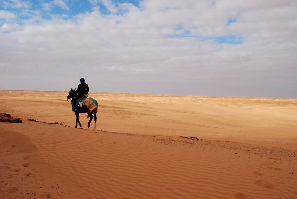 oasis de Ksar Ghilane est en plein coeur des dunes