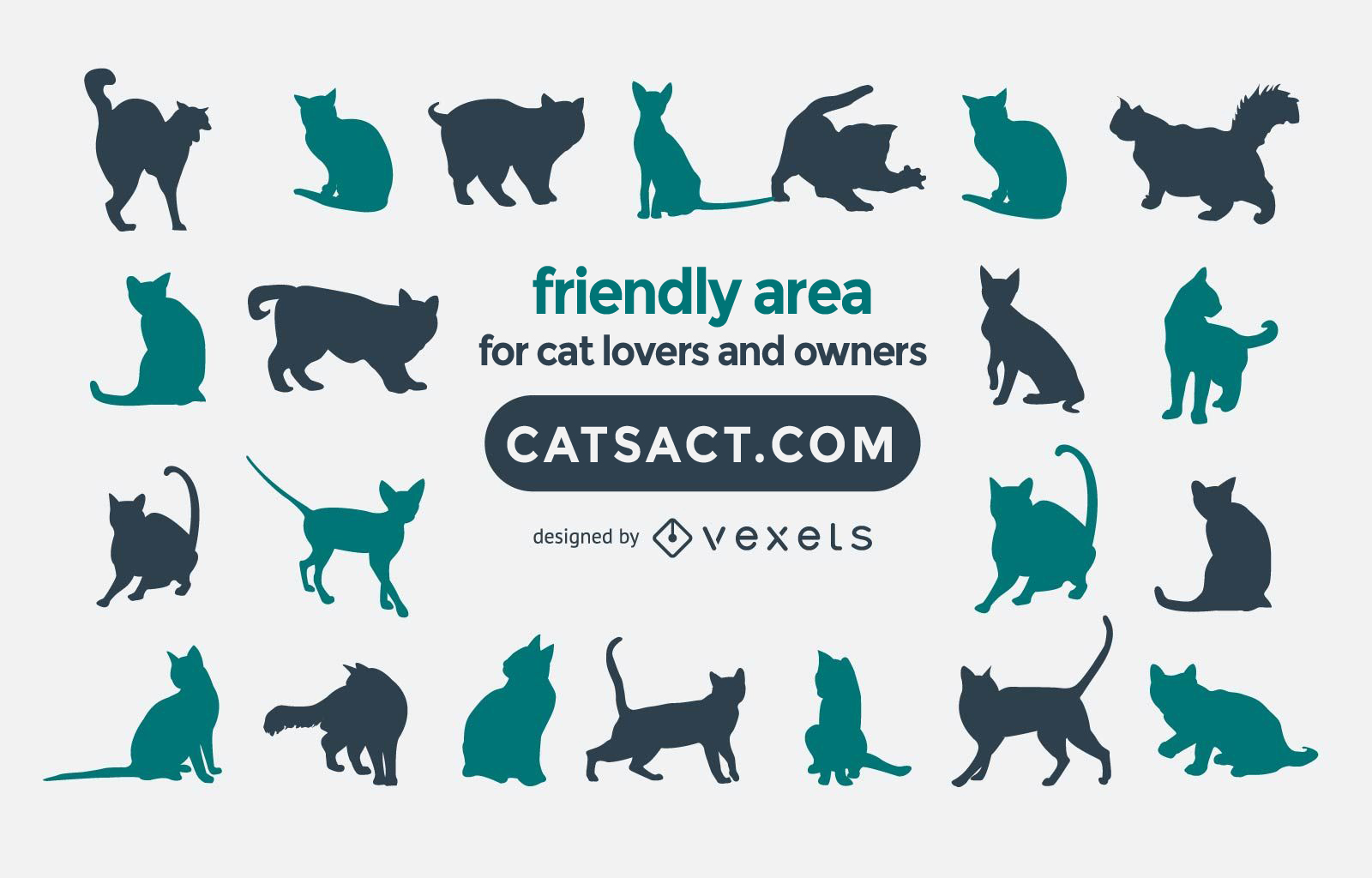 About catsact.com