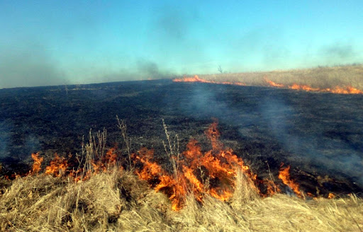 Atenție! Crește numărul de incendii de vegetație