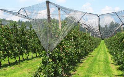 Ενημερωτική Ημερίδα για τους αγρότες στην Αργολίδα