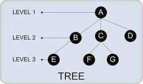 Macam-Macam Kunjungan Pada Pohon Biner