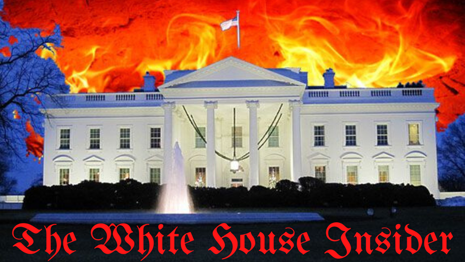 The White House Insider
