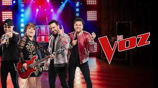 Reality de Canto La Voz Estados Unidos Temporada 02 Capítulo 09 Online Gratis