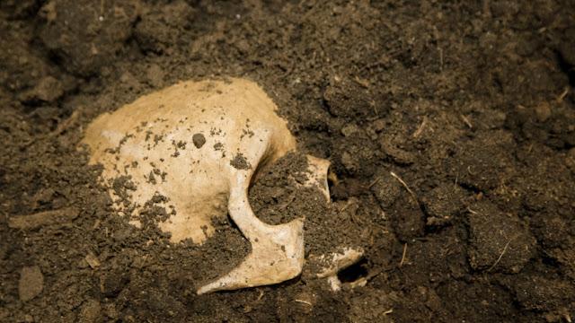 esqueleto antigo