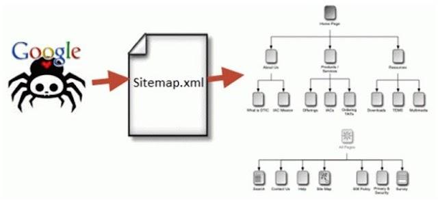 Sitemap là gì? Vai trò của sitemap trong SEO