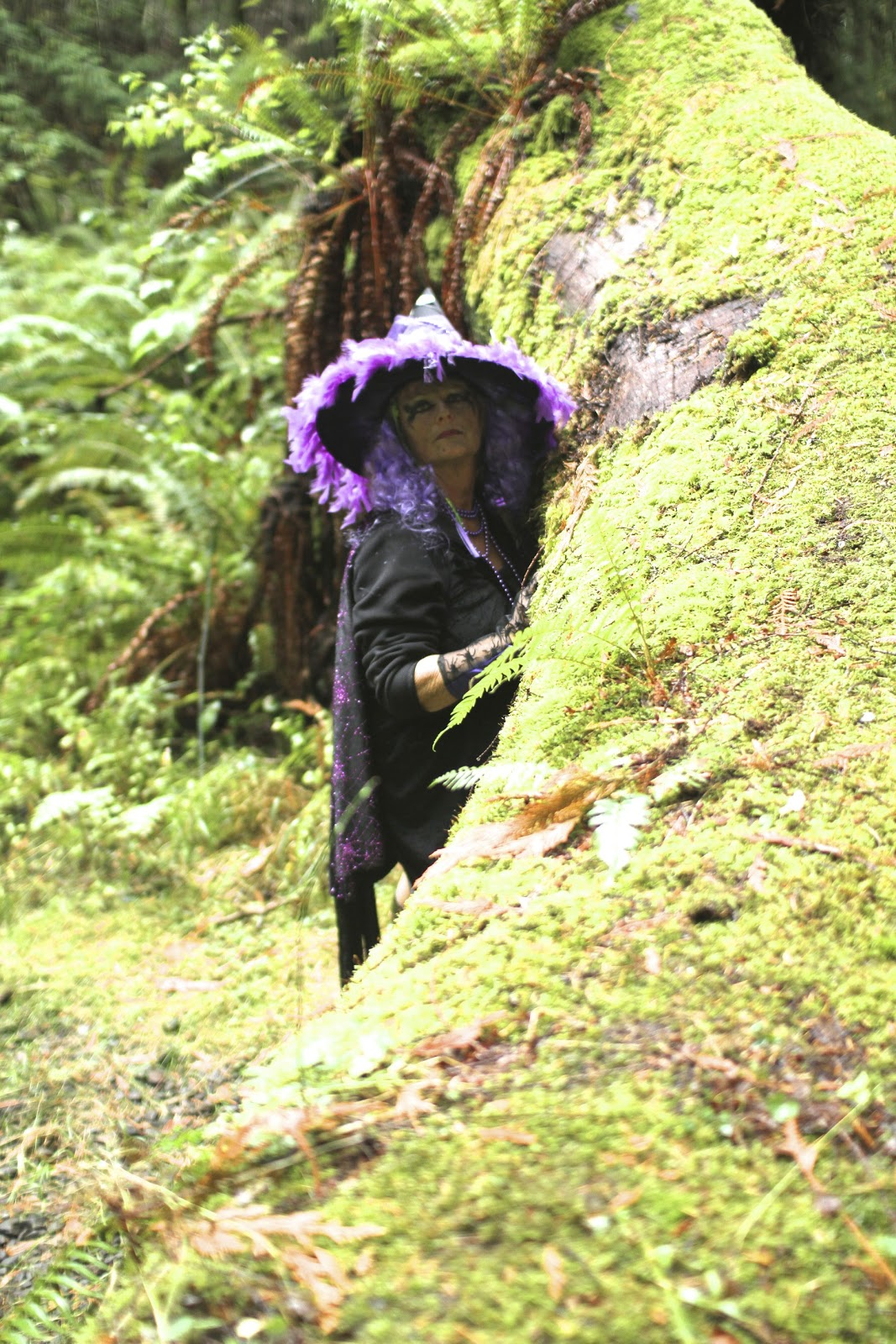 The Woods Wood Be Quiet If No Birds Sang Except The Best: Witches In The Woods By Lisarey Photography: Gabriola