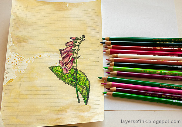 Layers of ink - Vintage Foxglove Art Journal Tutorial by Anna-Karin Evaldsson. Color with Faber-Castell Polychromos.