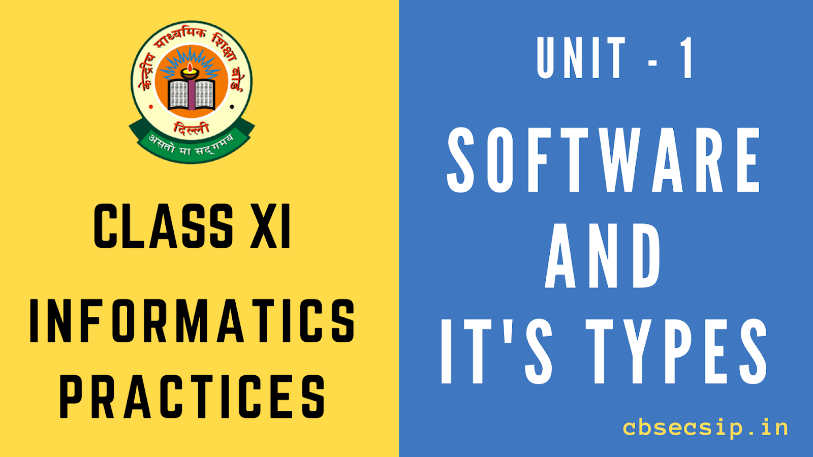 class 11 informatics practices Software and its type