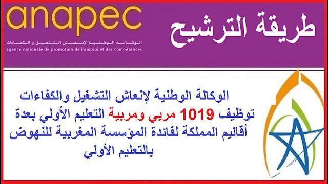 توظيف 1019 مربي ومربية التعليم الأولي بعدة أقاليم المملكة لفائدة المؤسسة المغربية للنهوض بالتعليم الأولي