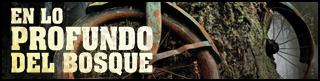 http://chronicle-cover.blogspot.com.es/2015/09/resena-40-en-lo-profundo-del-bosque.html