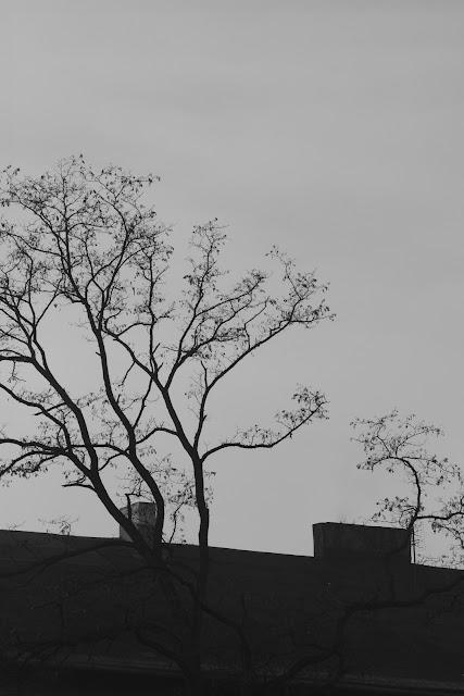 Koncepcyjna fotografia krajobrazu. Piktorialny obraz miasta. Ruda Śląska. fot. Łukasz Cyrus