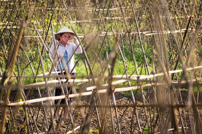 Mengapa Perempuan Hanya Dijadikan Buruh Tani di Tanahnya Sendiri?