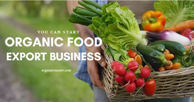 Best Ways to Save Money On Organic Food  💰